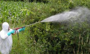 Traditional Spray Systems