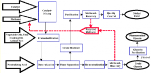 process of biodesiel production